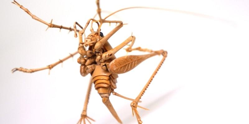 фигурки насекомых из бамбука