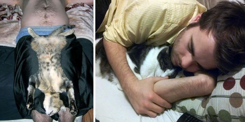 Сон в обнимку с котиком