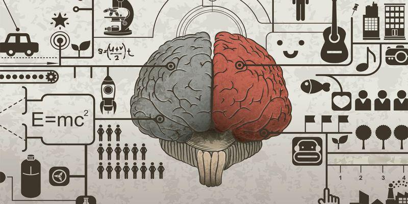 Эмоции или Логика